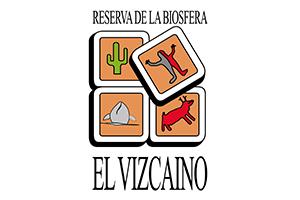 Vizcaino